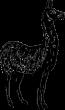Engraved Llama 549